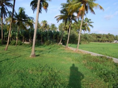 80 CENT LAND FOR SALE AT NANDIKKARA, PUDUKAD