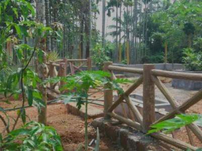 Beautiful  Villa plots  for sale at Manjeri, Malappuram.