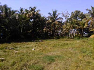 Plot near ashtamudi lake