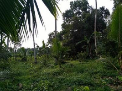 62 cents land in Elanji