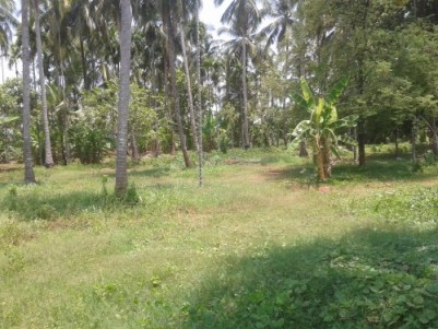 70 Cent Residential Land for sale at Puthur,Thrissur