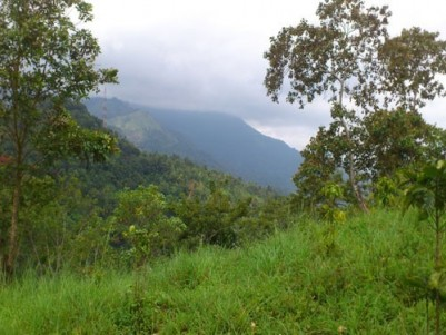 10 Acre of Commercial land for sale at Nilambur,Malappuram.