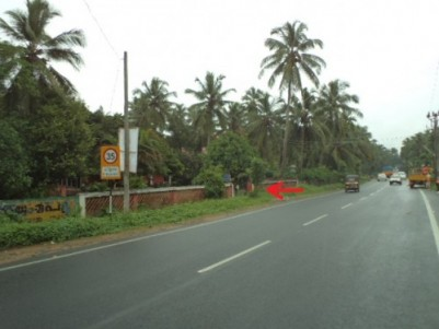 30 Cents of  Prime land for sale at Kuriachira,Thrissur.