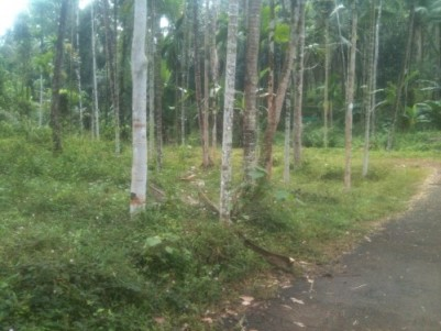 15.5 cent residential plot for sale @Koluvally Cherupuzha