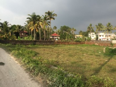 Plot for Sale in Muppathadam-Panayikulam Road, 7 Kms from LULU KOCHI