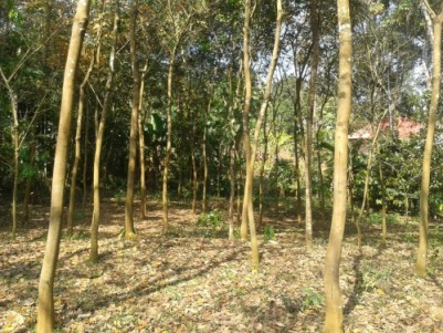 50 cent plot for sale in pathanamthitta - Ayroor