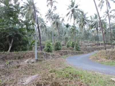 15 Acre Multi Crop Plantation for sale at Kuttiady,Kozhikode.