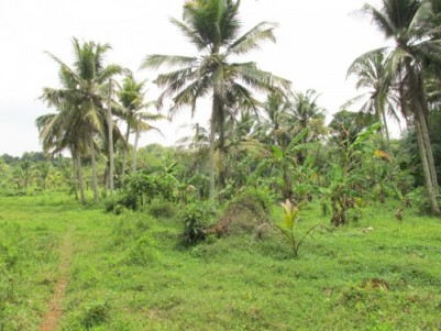 Land for sale near Thiruvalla, Kuttoor, Pathanamthitta