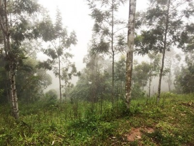 28 Cent Land for Sale at Chenkulam Dam, Munnar