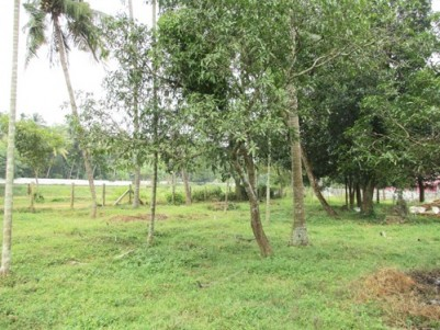 3 Plots for sale at Thrissur District.