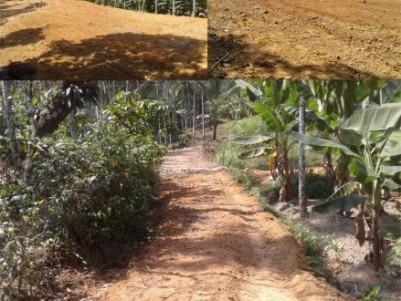 Land in Wayanad Near Banasura Sagar Dam Padinharathara