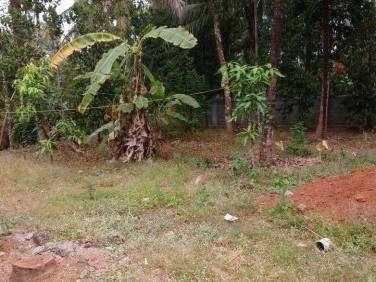 7 Cents of residential plot near Manuuthy