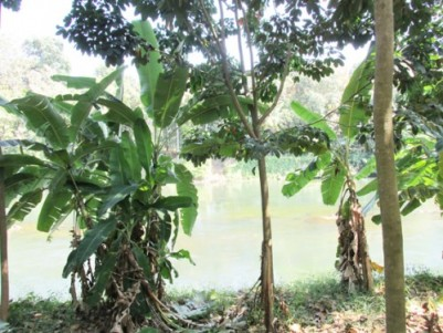 50 Cents Commercial cum Residential Land for Sale at Thodupuzha Town,Idukki.