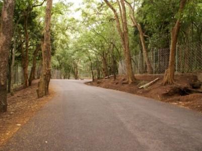 19 Acres Old patta land  for sale at Marayur,Idukki.
