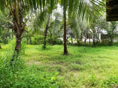 Urgent sale 11.5 cent residential plot at Guruvayoor