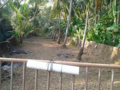 44 Cents land for sale at Nileswar,Kasargod.