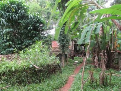 1.5 Acre Land for sale at Kooroppada, Kottayam