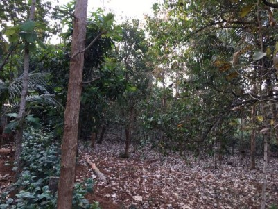 Residential land for sale at Palappuram,Palakkad