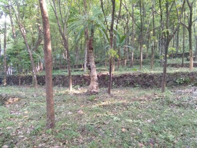 1 ACRE Rubber plantation with multi crop
