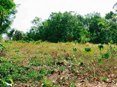 Commercial cum Residential plot for sale at  Alanallur, Mannarkkad, Palakkad (Road Frontage)