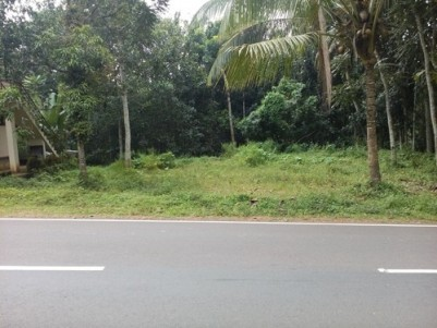 2 Acre 94 Cents Land for Sale at Ernakulam NH Bypass Road Frontage