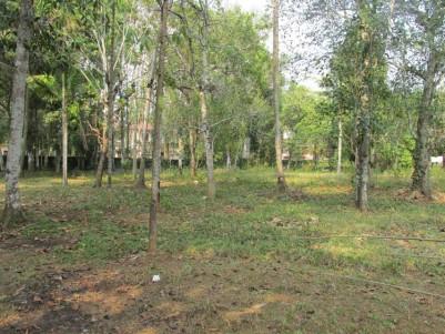 52 cent land for sale at Malakkara, Aranmula, Pathanamthitta