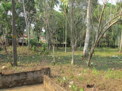 52 cent land for sale at Malakkara, Aranmula