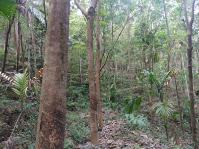 Commercial and Agricultural land for sale at Alakode, Kannur