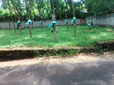 50 Cents of Residential Land for sale at Pulluvazhi, Perumbavoor, Ernakulam