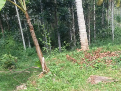 Residential land for sale at Meenangadi, Wayanad