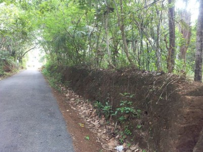 Residential land for sale at Thalassery, Kannur