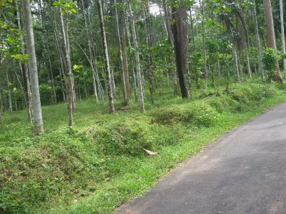 50 Cents of Residential land for sale at Sultan Bathery, Wayanad