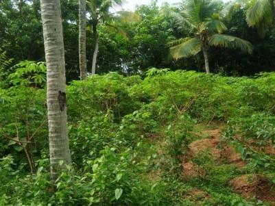 Residential Land for Sale at Near Vazhimukku, Balaramapuram, Trivandrum