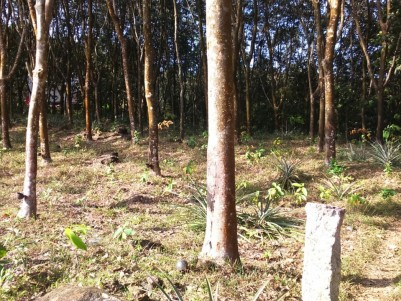 1.235 Acres of Prime Land for sale at Nedumangad, Trivandrum