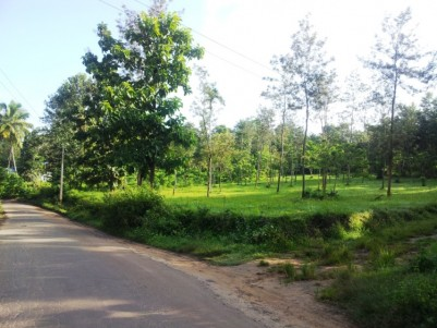 1 Acres of Residential Land for sale at Pulpally - Mananthavady Road, Wayanad
