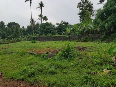15.22 Cents of Residential land for sale at East Okkal, Perumbavoor, Ernakulam