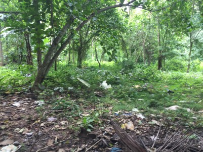 70 Cents of Commercial cum Residential land for sale at Chengannur, Pathanamthitta