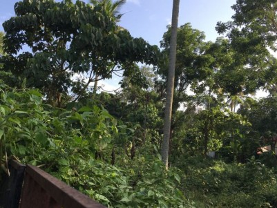 53 Cents of Residential land for sale at Kizhakkan Muthoor, Thiruvalla, Pathanamthitta