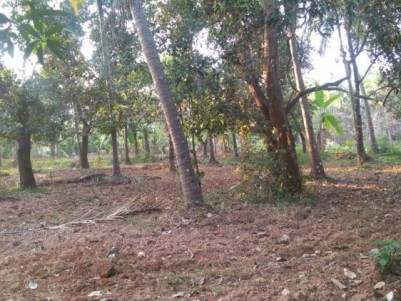 14 Cent Residential Land for Sale at Guruvayoor, Thrissur