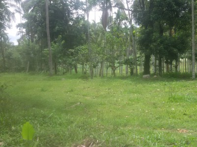 5 Acres of farm land for sale at Sultan Bathery, Wayanad