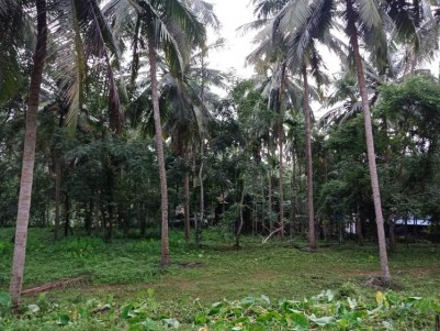 30 Cents of Residential land for sale at Perinthalmanna, Malappuram