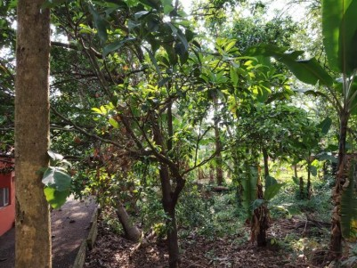 100 Cents Residential Land for Sale at  Near Kalathipady, Kottayam