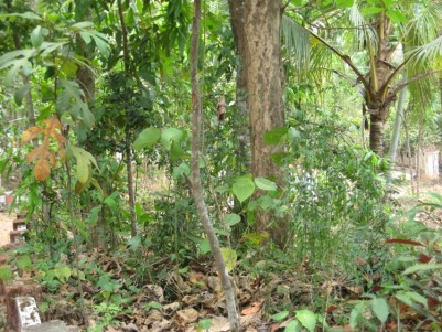 60 Cents of Residential land for sale at Manganam, Kottayam
