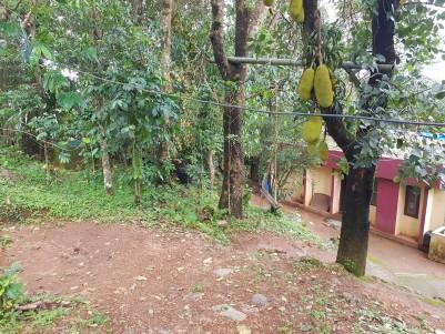 Residential Lands for sale at  Peerumedu,Idukki