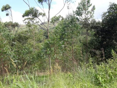Plain Land For Sale At Santhanpara, Idukki.