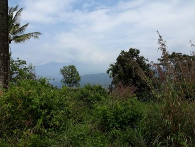 56 Cent Land For Sale At Idukki.