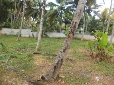 Residential Land For Sale At Kuravankonam, Trivandrum.