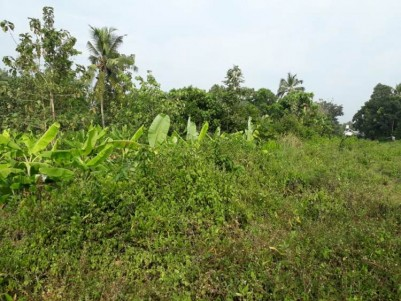 Residential Land For Sale at Angamaly, Ernakulam.