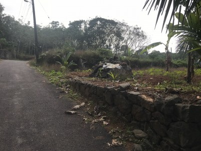 7 Cent Residential Land for Sale at Near Mulanthururthy,Ernakulam