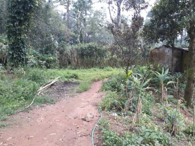8 Acre Land for Sale at Santhanpara, Idukki.